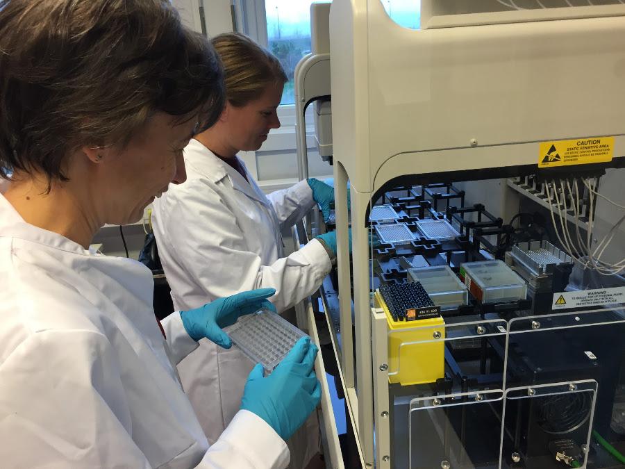 Forskere på lab. Foto.