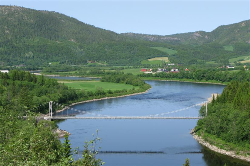 Villaksen i Namsen er genetisk påvirket av rømt oppdrettslaks