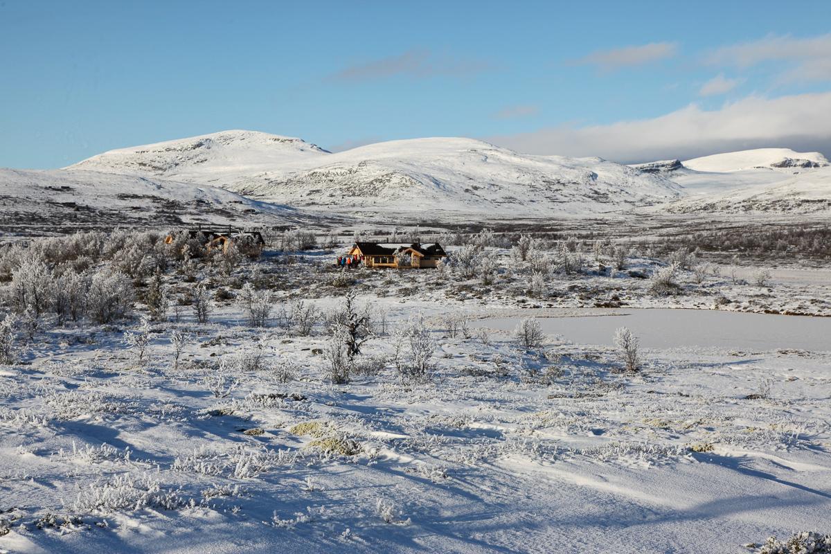 De to nye hyttene som utgjør Veslefjellbua er allerede populære. Foto: Vegard Gundersen / NINA.